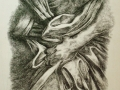 particolare_anatomico_iii_acquaforte_su_rame_50x35_2000
